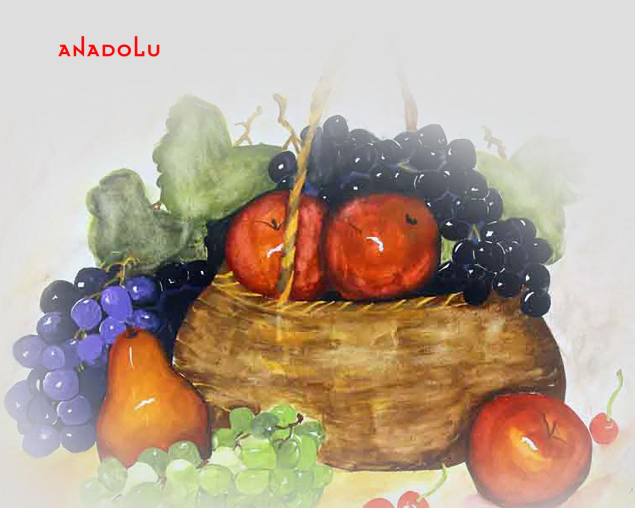 Meyve Tabağı Çizimleri Antalyada