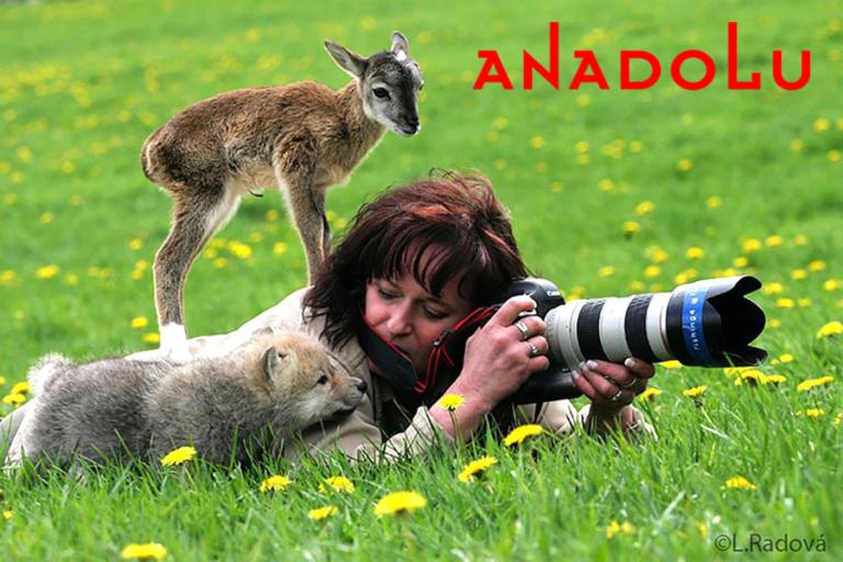 Antalyada Doğa Fotoğrafı Çekimleri