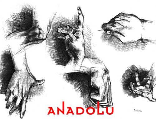 Antalyadaki Kuru Kalem Hayvan Çizim Kitabı