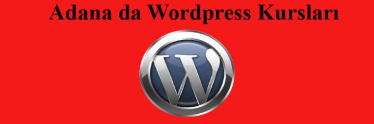 wordpress kursları Antalyada